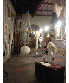 Installation Acrobates 5